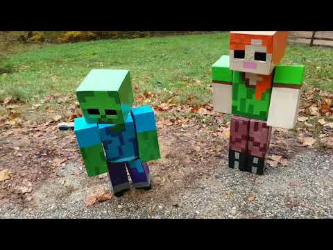 Minecraft costume Disfraz de minecraft