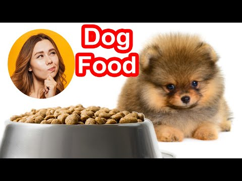 how to feed dogs in minecraft xbox | DIY Home Decor Ideas | Art and Craft