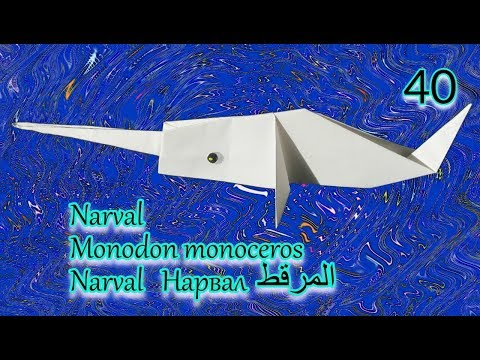 【 Origami 】 Narwhal / Monodon monoceros / المرقط / Narval Нарвал / イッカク【40】