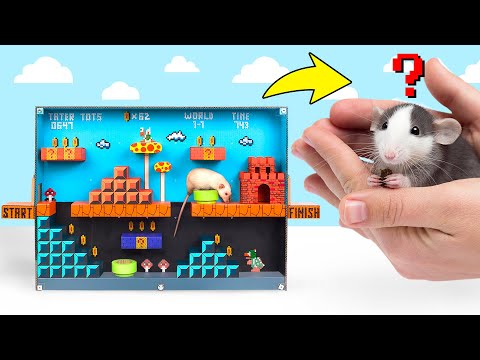 DIY Rat Maze Super Mario Game Style